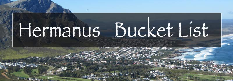 Bucket list hermanus